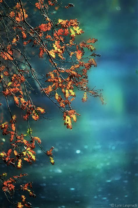 fall photography aqua blue river orange autumn leaves 8x12
