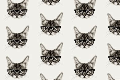 iphone wallpaper cat glasses hipster abstract minimalist art iphone 5 wallpapers
