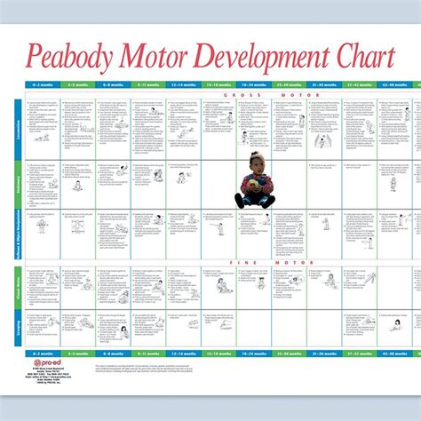 peabody motor development sensory motor aids low prices