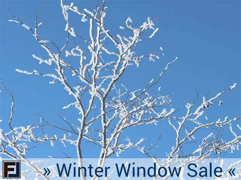 24 hour house window repair frontline windows winter window sale