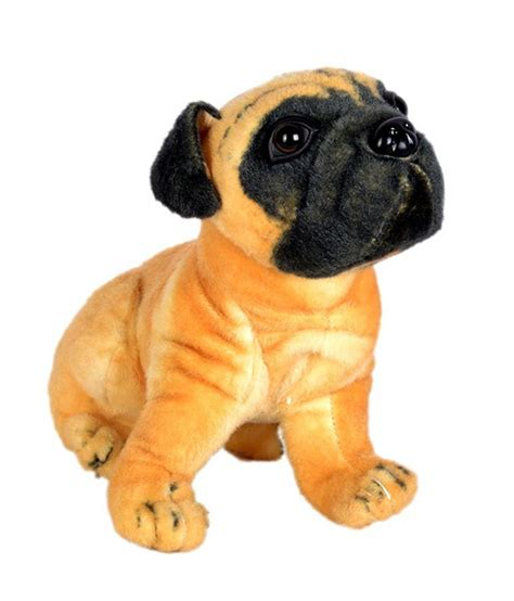 buy a pug puppy pug buy pug at low price snapdeal