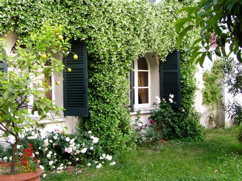 come organizzare un giardino piccolo come progettare un giardino ideare casa