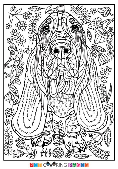 detailed coloring pages of dogs dog coloring pages printable basset hound page sheet