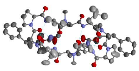 protein molecule diagram image gallery protein molecules