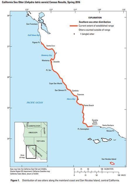 sea otter diagram keystone species kelp forest diagram pr energyinfo