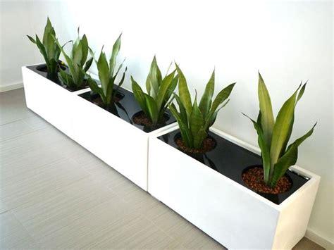 vasi fioriere vasi resina e prezzi fioriere fioriere e vasi fioriere caratteristiche