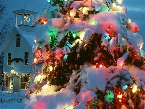 Christmas tree lights snow christmas tree lights wallpaper picture