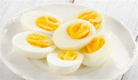 Tips Kandungan Kimia Pada Biji Pepaya Makan 2 Biji Telur Selama Seminggu Pentingnya Kandungan