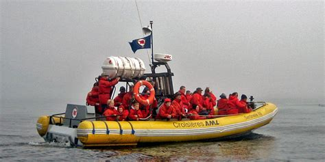 zodiac boat quebec whale watch saguenay st lawrence marine park notable