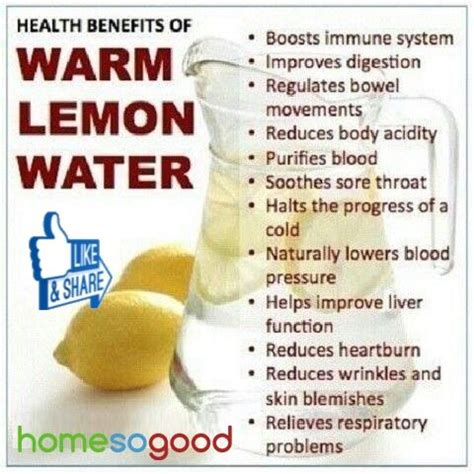 Detox Water Benefits And Side Effects by 17 Best Images About Healthy On