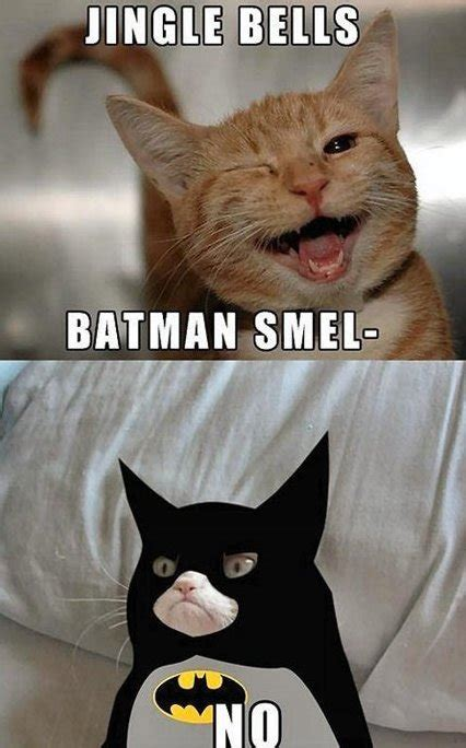 Funny Batman Meme - i am batman cat