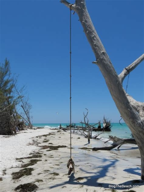 rope swings in florida photos anna maria longboat key beaches blog the beach