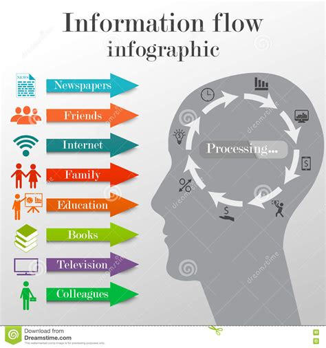 Columbia Mba Facts And Statistics by Information Flow Infographic Stock Vector Illustration