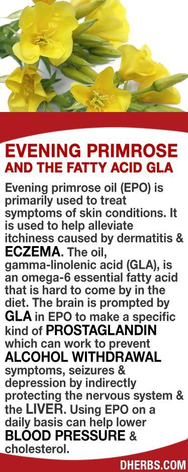 Eczema Detox Diet Plan by Fatty Liver Diet On Fatty Liver Cleansing
