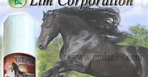 Mulsa Plastik Pertanian Cap Kuda pabrik plastik mulsa hitam perak cap kuda jual mulsa plastik untuk pertanian tambak