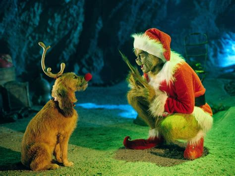 the grinch jim carrey wallpaper 141524 fanpop
