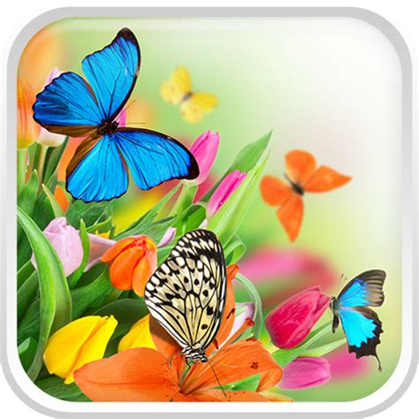 Live Butterfly Wallpaper For Windows 7 by Butterfly Live Wallpaper For Pc And Laptop