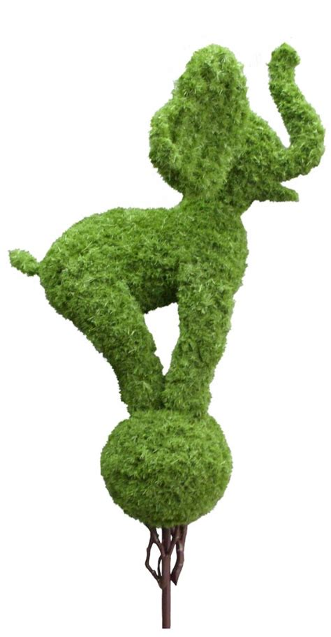 elephant topiary animal topiary trees barrango inc