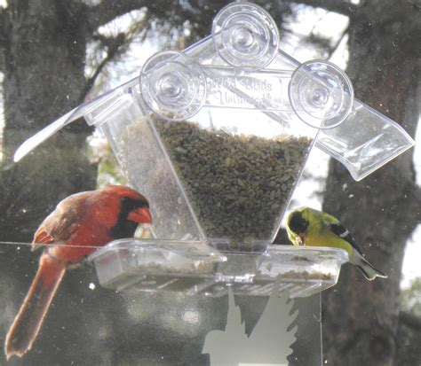 bird food for cardinals bird cages