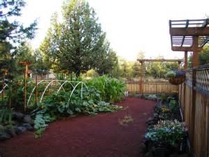 vegetable gardening garden beautiful