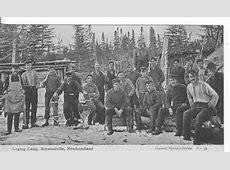 Logging History – Anglo Newfoundland Development Company Logging Camp History
