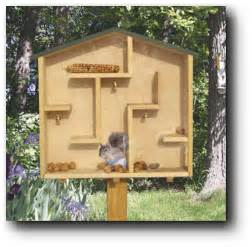 squirrel house plans a mazing squirrel house woodworking plans