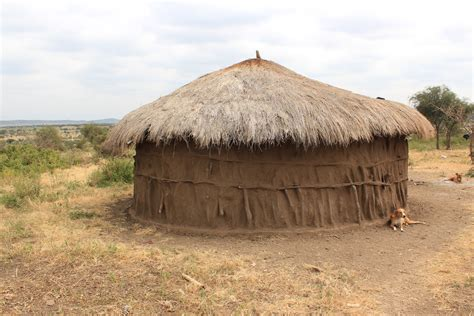 poop houses safari day 1 lake manyara and maasai land countdown to
