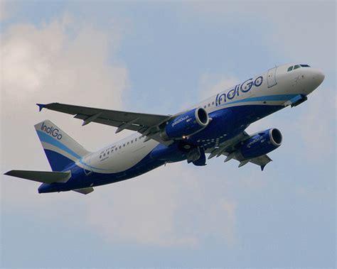 indigo airlines careers cabin crew indigo airlines cabin crew