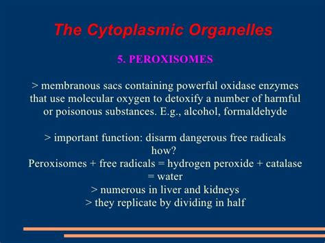 Detox Organelle by The Cell Slideshow