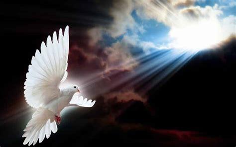 imagenes catolicas espiritu santo oraci 243 n al espiritu santo las mejores oraciones