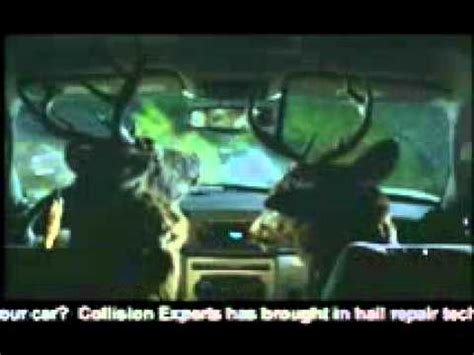 Commercial Driving Car by Collision Experts Deer Drivers Commercial