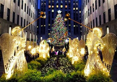 when do they light the tree in nyc daily what 5 things you didn t about the