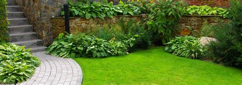 gardening plymouth landscape gardening south hams including exeter plymouth