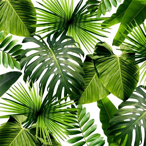the color of 2017 15 greenery hued home products inspired by pantone s 2017