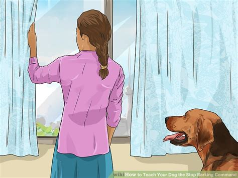 how to your to stop barking on command how to teach your the stop barking command 12 steps