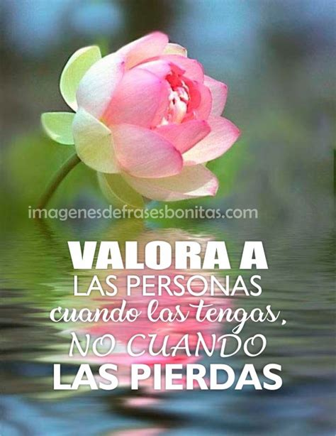imagenes catolicas con frases hermosas frases con imagenes hermosas para meditar imagenes de