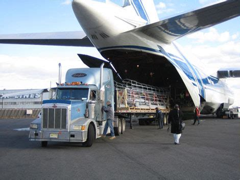 console shipping services india limited service provider of air freight air charter