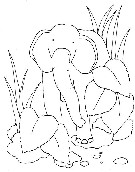 coloring pages jungle leaves the gallery for gt jungle leaves coloring pages