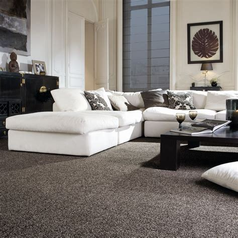 Living Room Silver Carpet 1000 Ideas About Carpet Colors On Wool Carpet