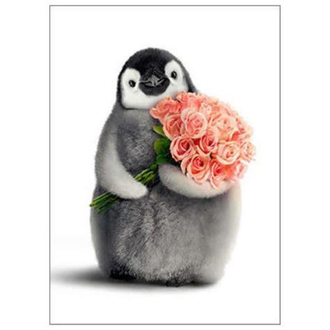 s day penguin happy s day penguin card penguin gift shop