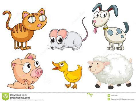imagenes animales varios seis diferentes tipos de animales fotograf 237 a de archivo