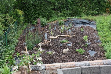 Forum Mein Schoener Garten 5356 by Gestaltungsfrage Mein Sch 246 Ner Garten Forum