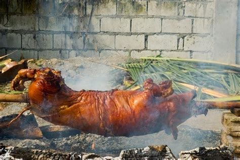 backyard pig roast how to safely do a backyard pig roast slideshow the