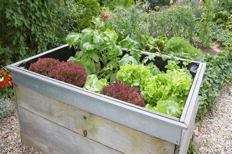 benefits of raised bed gardening top 10 benefits of raised garden beds blue planet custodians