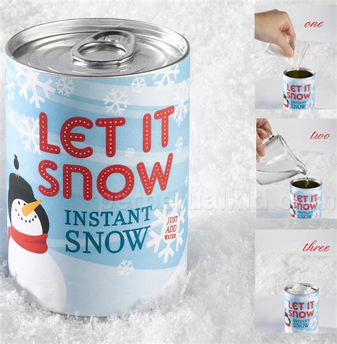 instant snow in a can bagofnothing com