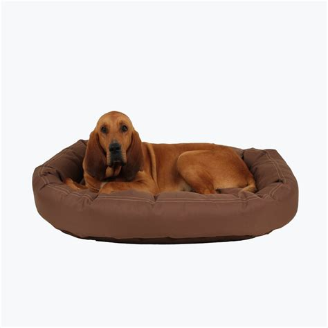 chew resistant dog bed brutus tuff chew resistant donut dog bed best of dog