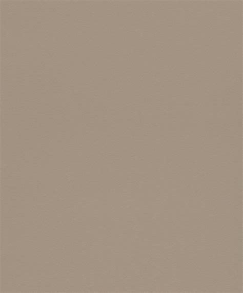 tope color tapete vlies rasch uni taupe wallpaper color 517408
