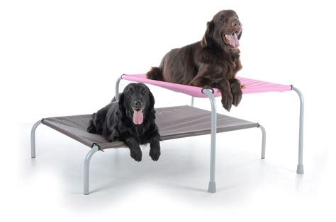 bed extension for dog original raised dog bunk bed leg extensions care 4 dogs