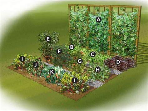 best garden layout design small vegetable garden ideas pinteres