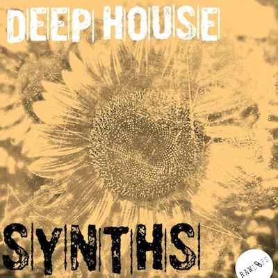 synth house music raw loops deep house synths sle pack